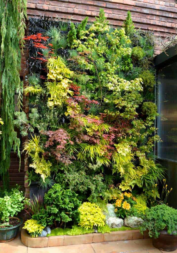 04-create-a-living-wall-of-leaves-garden