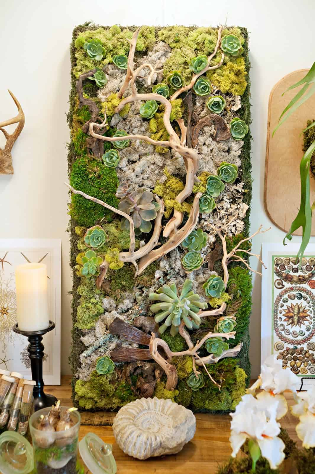 10-embellished-wall-panel-showcases-succulents-and-driftwood-vertical-garden-idea