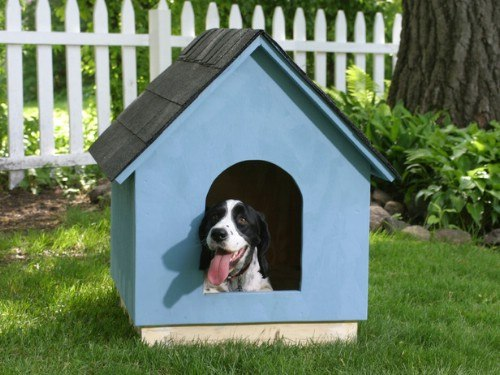 The Classic Classy Dog House