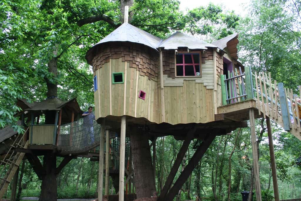 Two towers tree house
