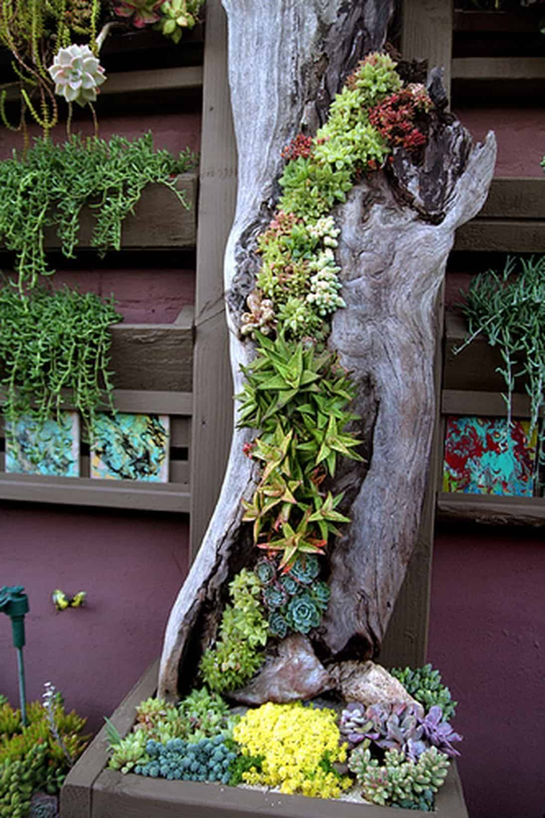 20-a-juxtaposition-of-old-and-new-vertical-gardens