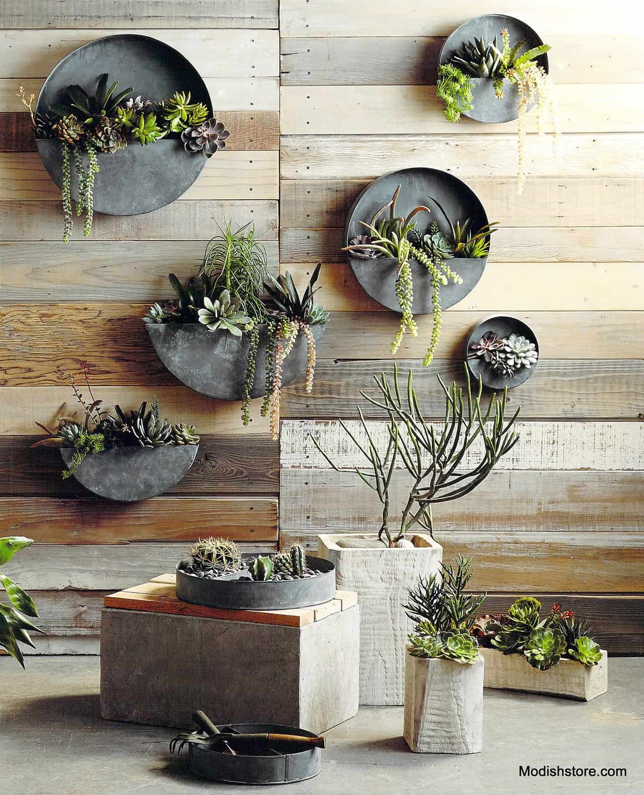 25-muted-round-zinc-planters-allow-plants-to-shine-vertical-gardens