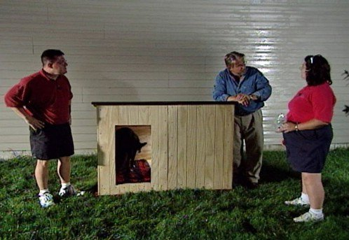 A Customized Doggy House