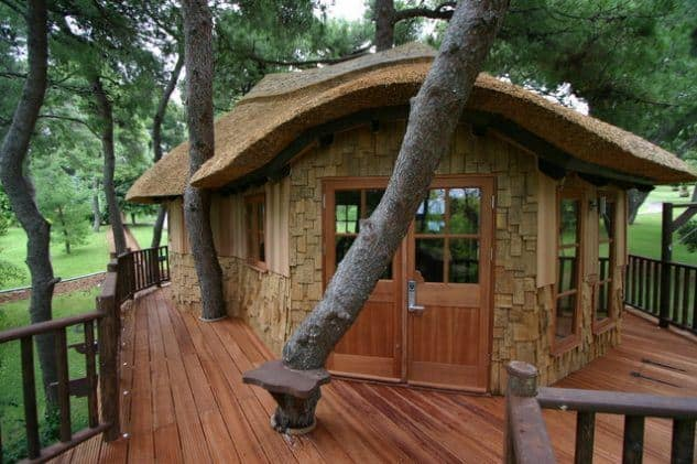 Hobbit house in the trees