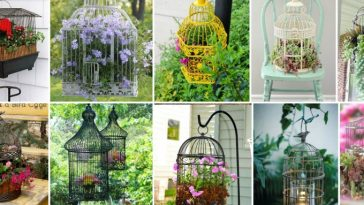 Birdcages for garden