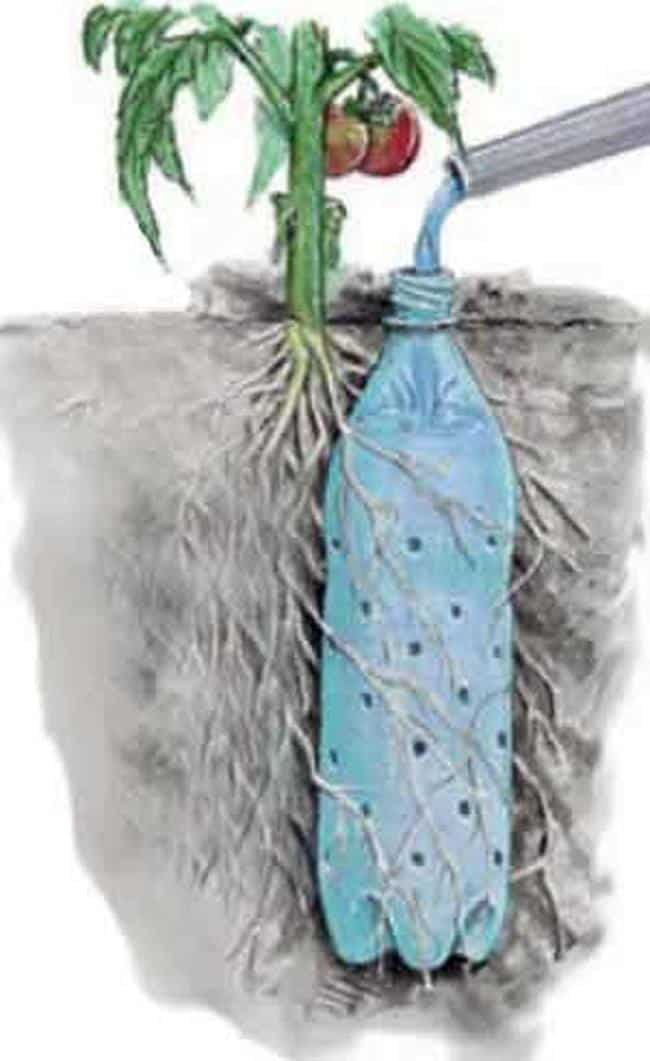 Protect Your Garden With This DIY Recycled Bottle Watering System