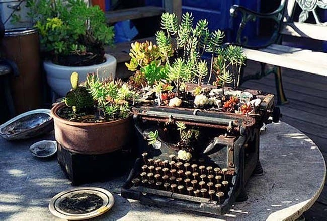 A DIY Classic Garden Planter Using An Old Typewriter