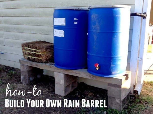 Environmentally Friendly DIY Rain Barrel For Your Garden