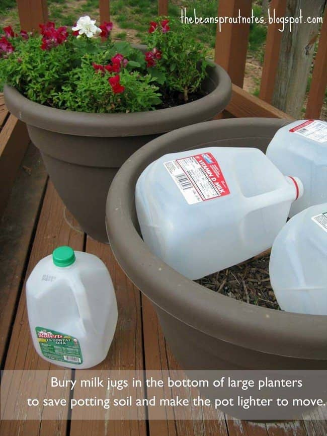 No Need To Overfill Your Large Planters: Use Recycled Bottles Instead!
