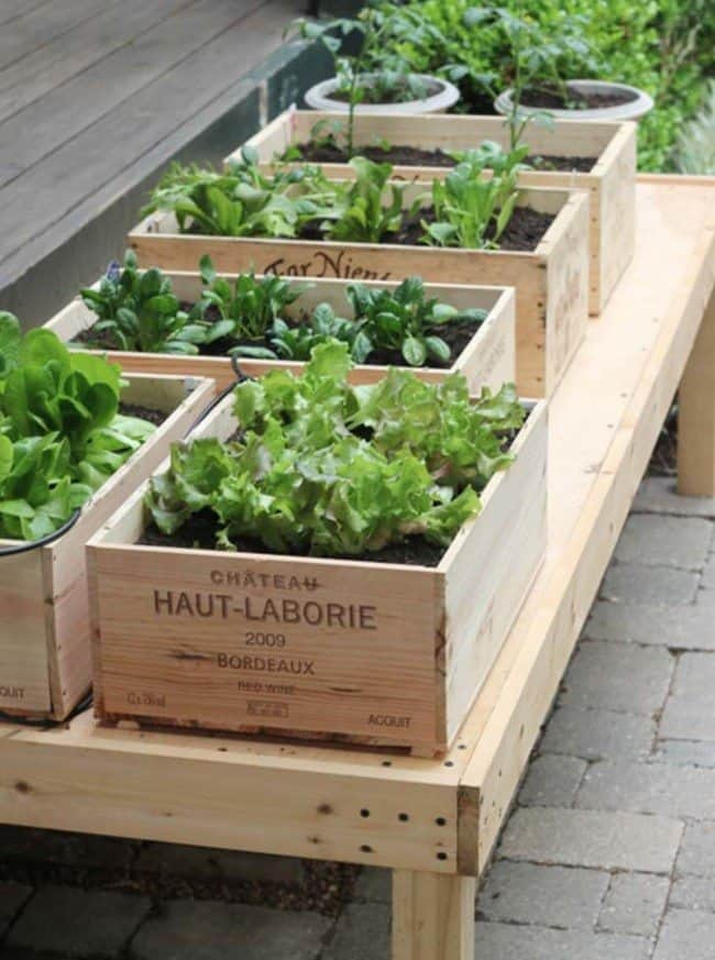 Recycling Old Wine Boxes Into Planters