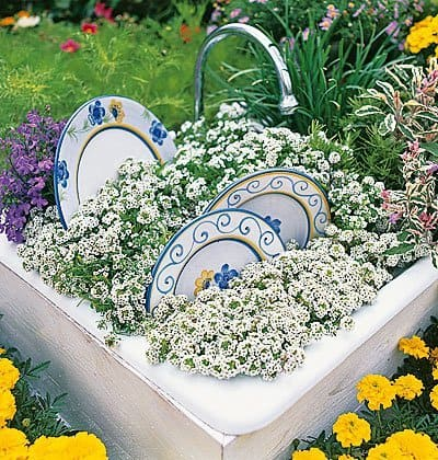 Old sink used as a planter