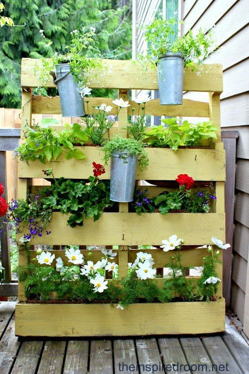 Making Use of Old Wooden Pallets for garden