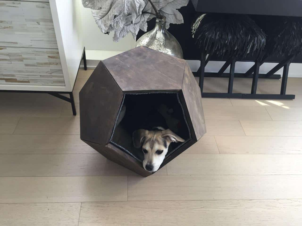 Comfortable Dog Fort