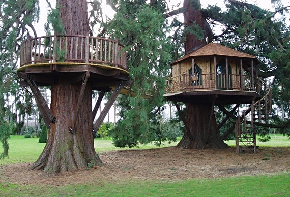 Dual treehouse between 2 trees