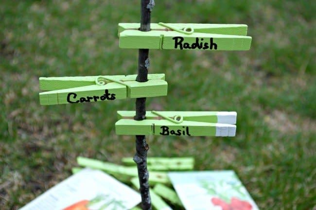 DIY Clothing Pin Garden Markers