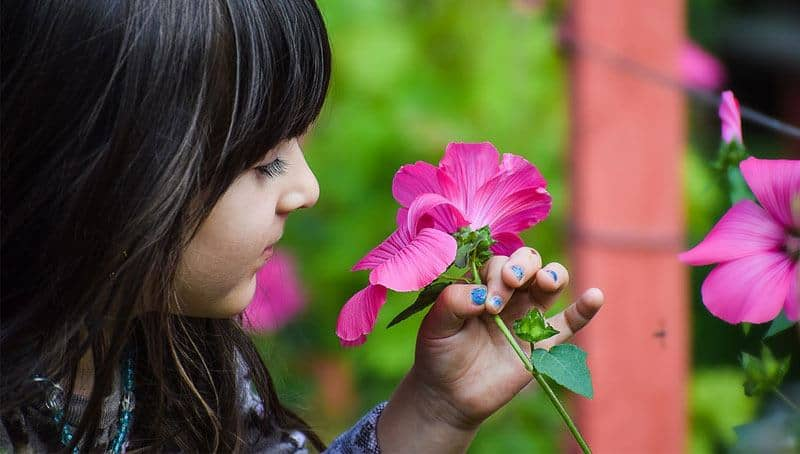 kid-holding-a-colorful-flower