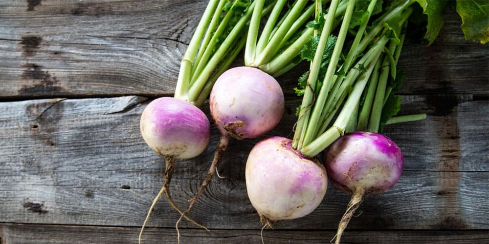 gorgeous turnips