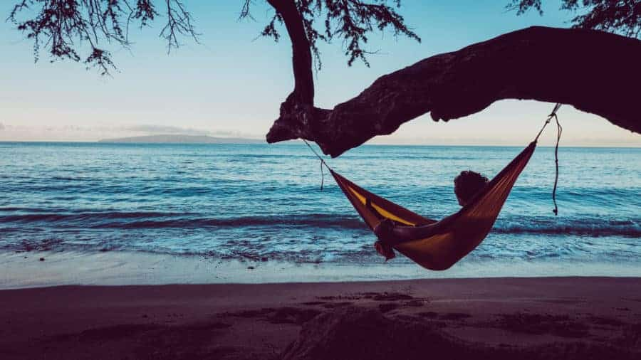 relaxing hammock swing near the beach
