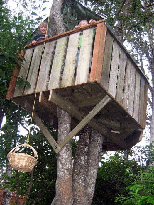 tree house and a pully system