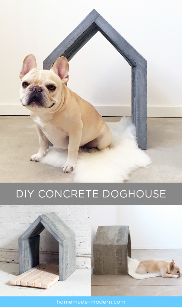 Open Air Concrete Doghouse