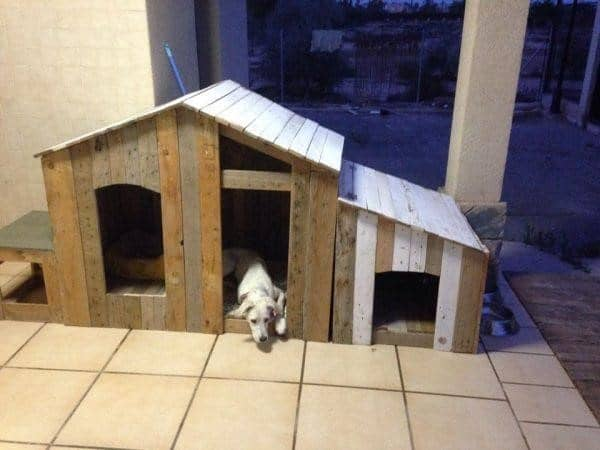 The Pallet Dog House