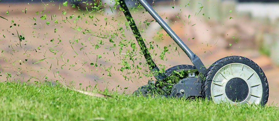 hand lawn mowing